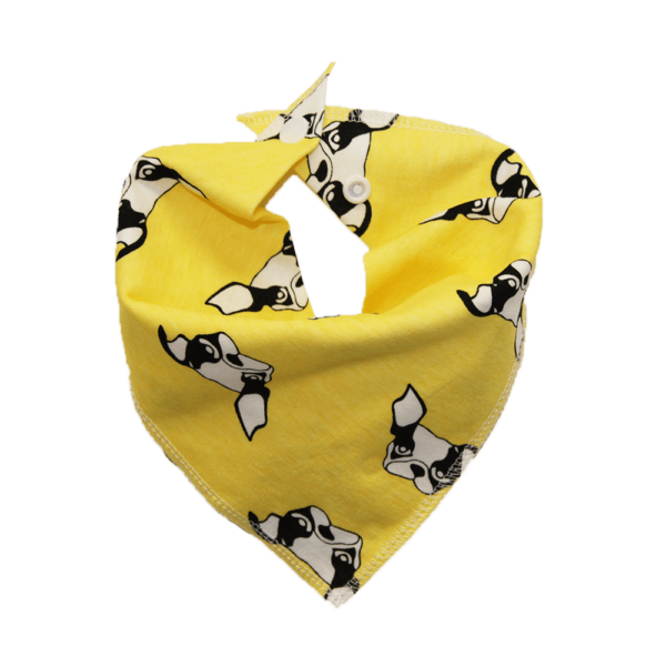 frenchie print dog bandana