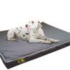 Snooza Dog Bed