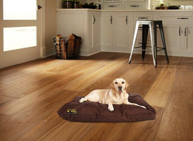 dog doza cushion bed brown