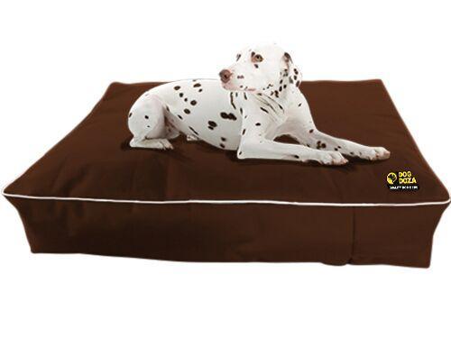 dog doza rectangle brown