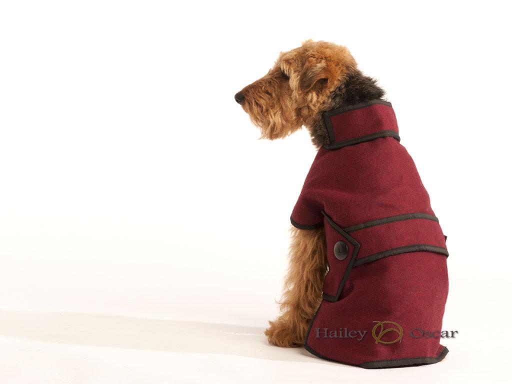 Blazer_Wool_Dog_Coat_Maroon2